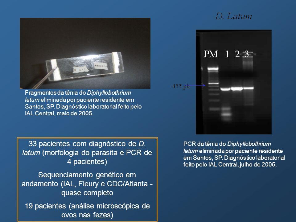 Fragmentos da tênia do Diphyllobothrium latum eliminada por paciente residente em Santos, SP. Diagnóstico laboratorial feito pelo IAL Central, maio de