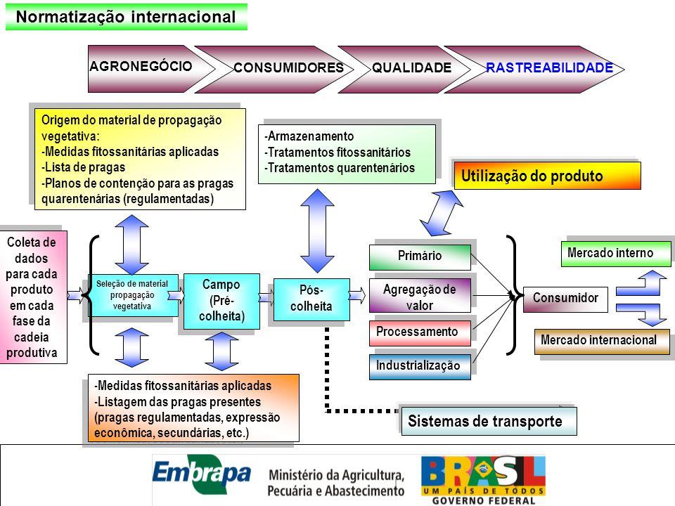 Coleta de dados para cada produto em cada fase da cadeia produtiva Coleta de dados para cada produto em cada fase da cadeia produtiva Seleção de mater