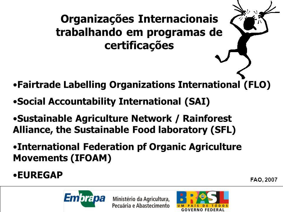 Organizações Internacionais trabalhando em programas de certificações Fairtrade Labelling Organizations International (FLO) Social Accountability Inte