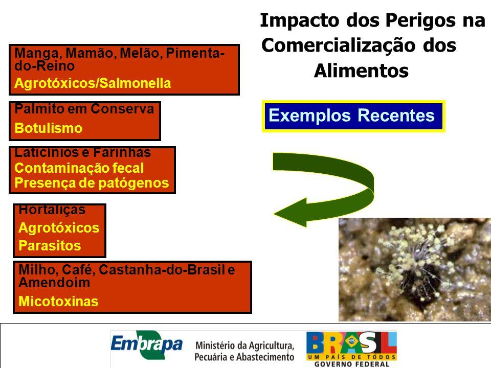 Impacto dos Perigos na Comercialização dos Alimentos Manga, Mamão, Melão, Pimenta- do-Reino Agrotóxicos/Salmonella Palmito em Conserva Botulismo Latic