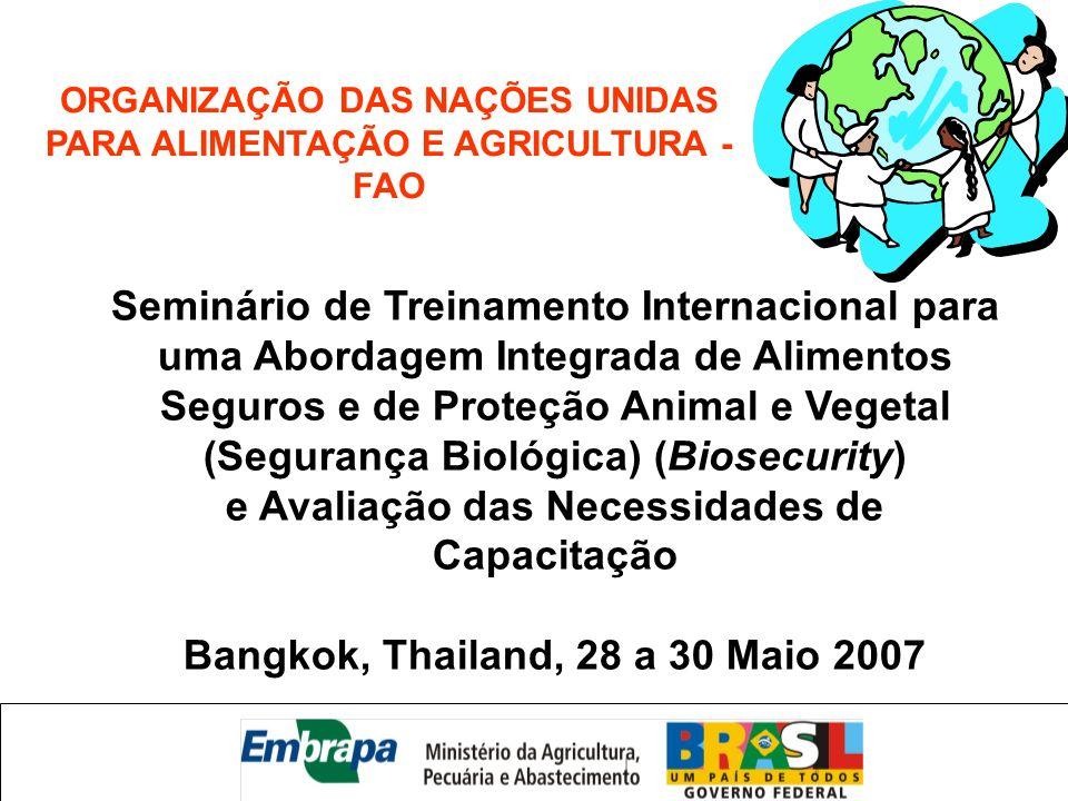 Seminário de Treinamento Internacional para uma Abordagem Integrada de Alimentos Seguros e de Proteção Animal e Vegetal (Segurança Biológica) (Biosecu