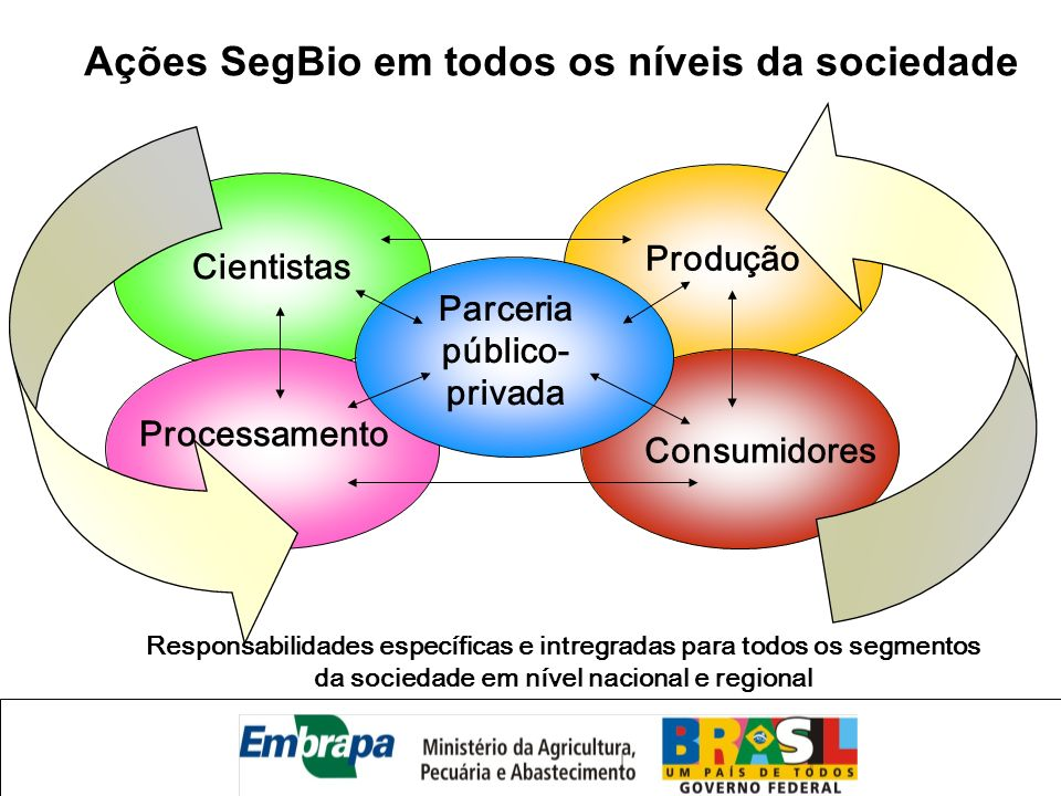 Cientistas Produção Processamento Consumidores Parceria público- privada Ações SegBio em todos os níveis da sociedade Responsabilidades específicas e