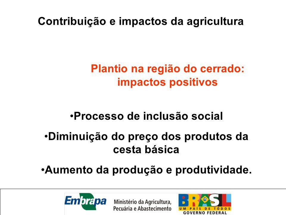 Processo de inclusão social Diminuição do preço dos produtos da cesta básica Aumento da produção e produtividade. Contribuição e impactos da agricultu