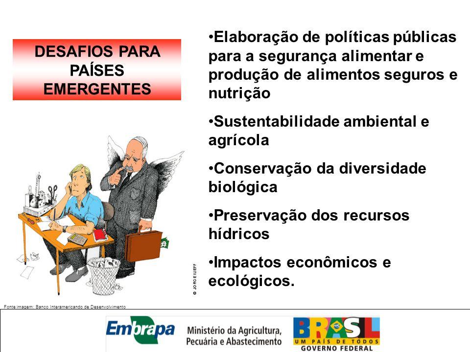 Fonte imagem: Banco Interamericando de Desenvolvimento DESAFIOS PARA PAÍSES EMERGENTES Elaboração de políticas públicas para a segurança alimentar e p