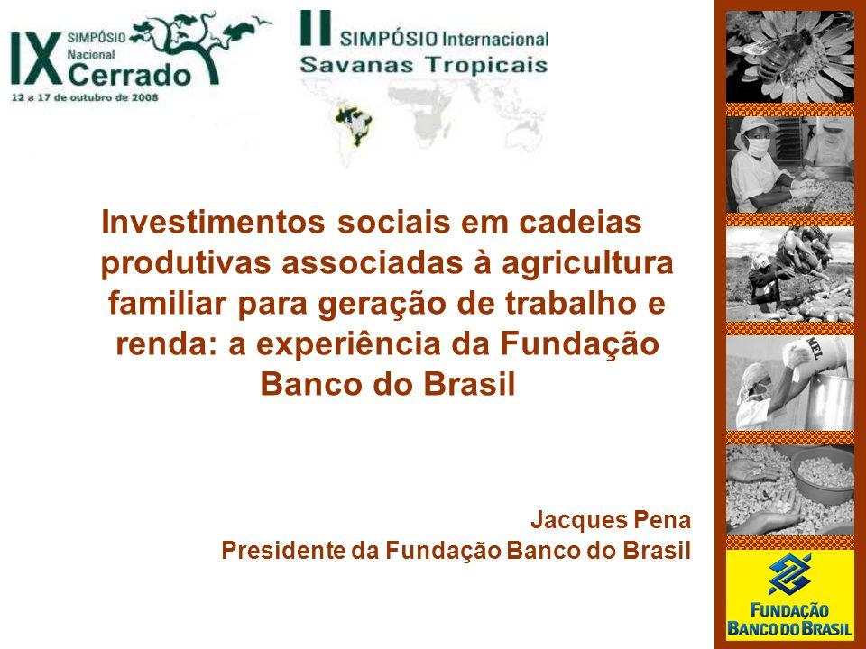 Investimentos sociais em cadeias produtivas associadas à agricultura familiar para geração de trabalho e renda: a experiência da Fundação Banco do Bra