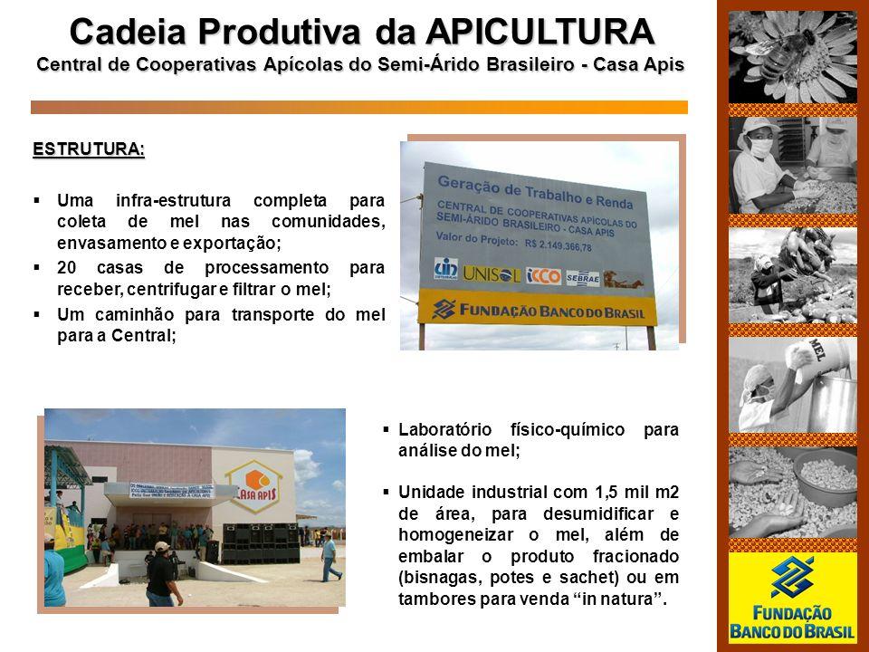 ESTRUTURA: Uma infra-estrutura completa para coleta de mel nas comunidades, envasamento e exportação; 20 casas de processamento para receber, centrifu