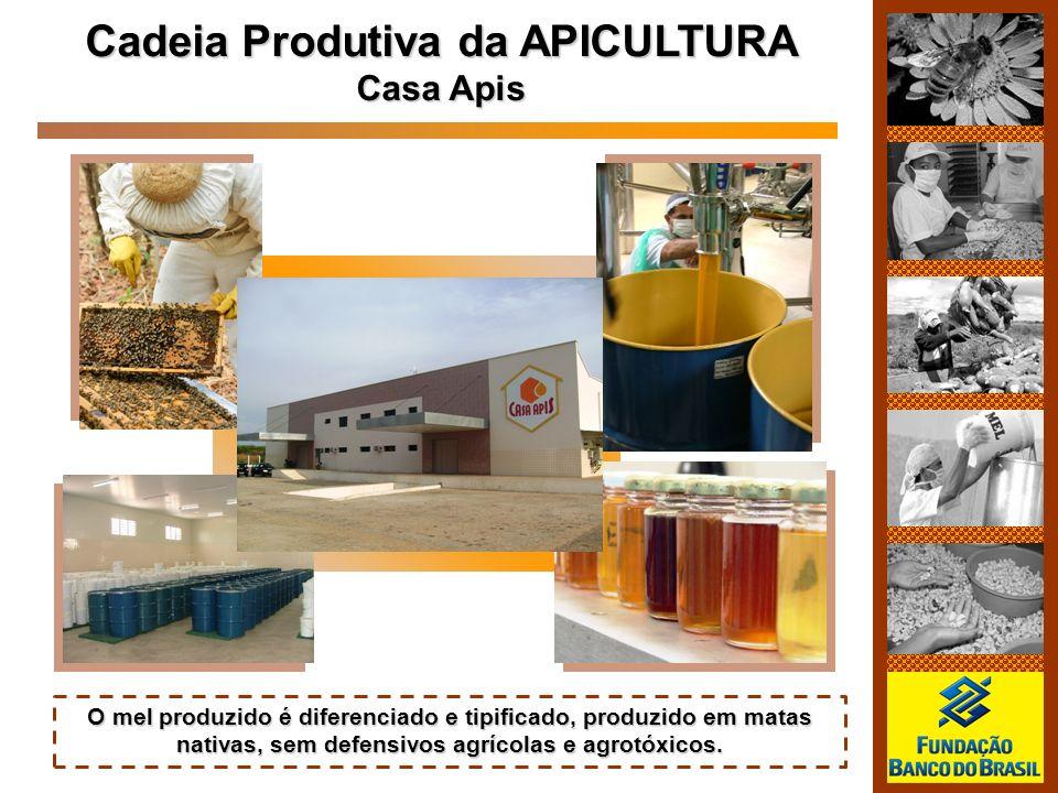 Cadeia Produtiva da APICULTURA Casa Apis O mel produzido é diferenciado e tipificado, produzido em matas nativas, sem defensivos agrícolas e agrotóxic