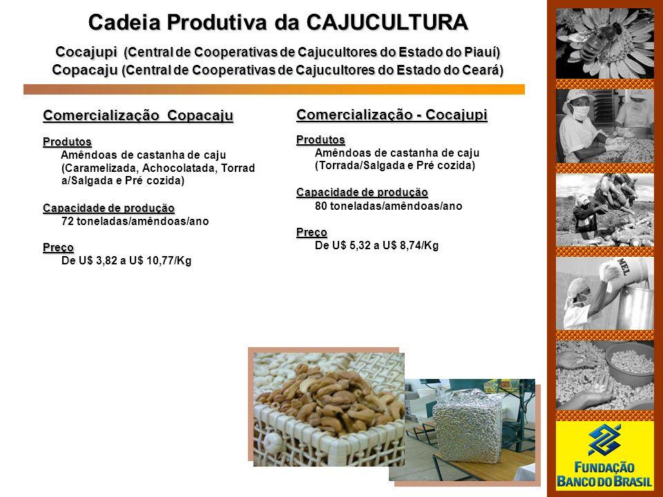 Cadeia Produtiva da CAJUCULTURA Cocajupi (Central de Cooperativas de Cajucultores do Estado do Piauí) Copacaju (Central de Cooperativas de Cajucultore