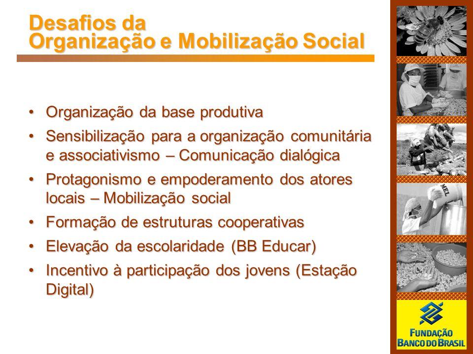 Desafios da Organização e Mobilização Social Organização da base produtivaOrganização da base produtiva Sensibilização para a organização comunitária
