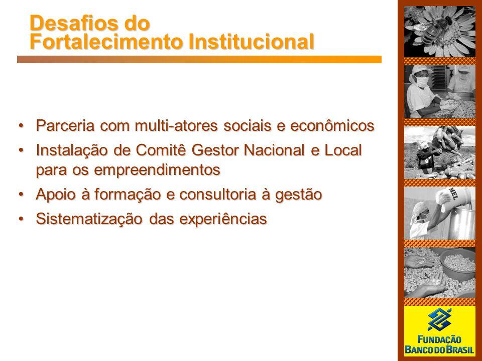 Desafios do Fortalecimento Institucional Parceria com multi-atores sociais e econômicosParceria com multi-atores sociais e econômicos Instalação de Co