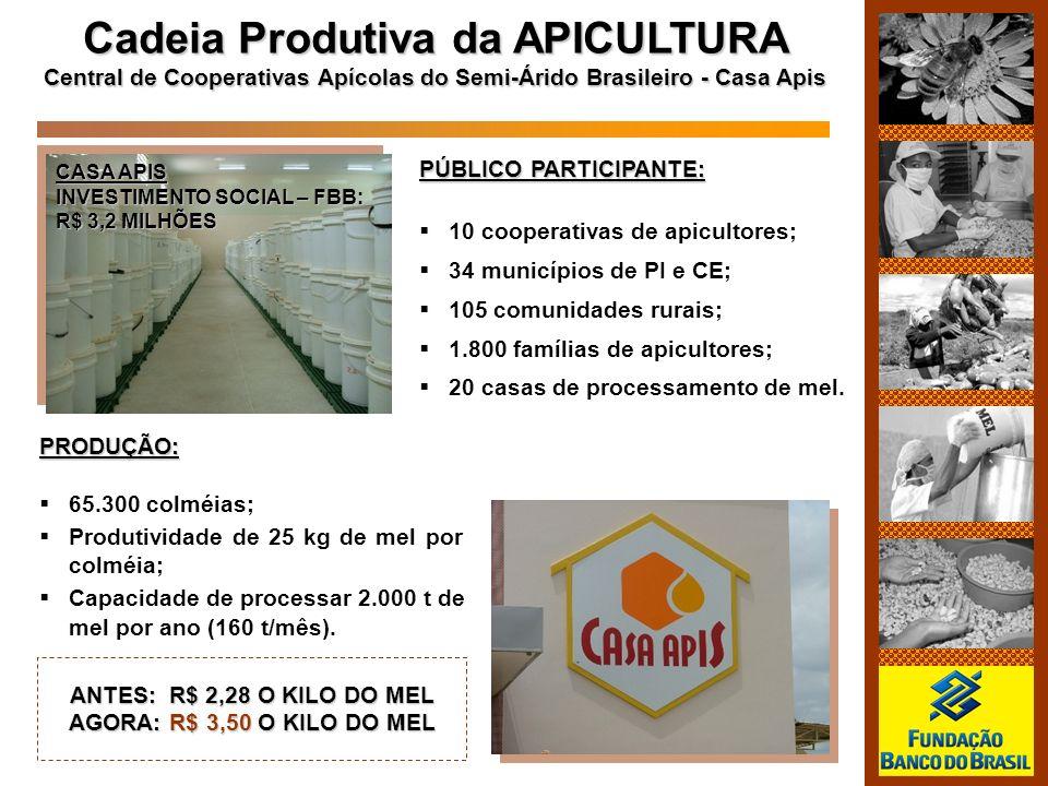 Cadeia Produtiva da APICULTURA Central de Cooperativas Apícolas do Semi-Árido Brasileiro - Casa Apis PÚBLICO PARTICIPANTE: 10 cooperativas de apiculto