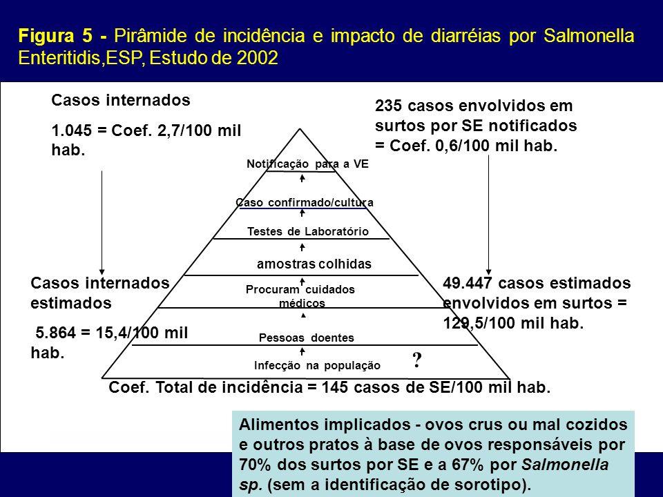 Infecção na população Pessoas doentes Procuram cuidados médicos amostras colhidas Caso confirmado/cultura Notificação para a VE Testes de Laboratório