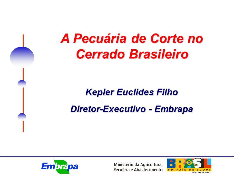 A Pecuária de Corte no Cerrado Brasileiro Kepler Euclides Filho Diretor-Executivo - Embrapa