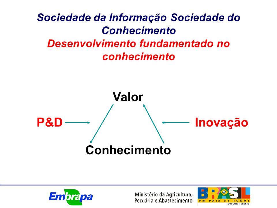 Sociedade da Informação Sociedade do Conhecimento Desenvolvimento fundamentado no conhecimento P&D Valor Conhecimento Inovação