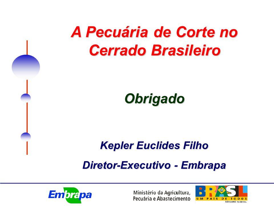 A Pecuária de Corte no Cerrado Brasileiro Obrigado Kepler Euclides Filho Diretor-Executivo - Embrapa