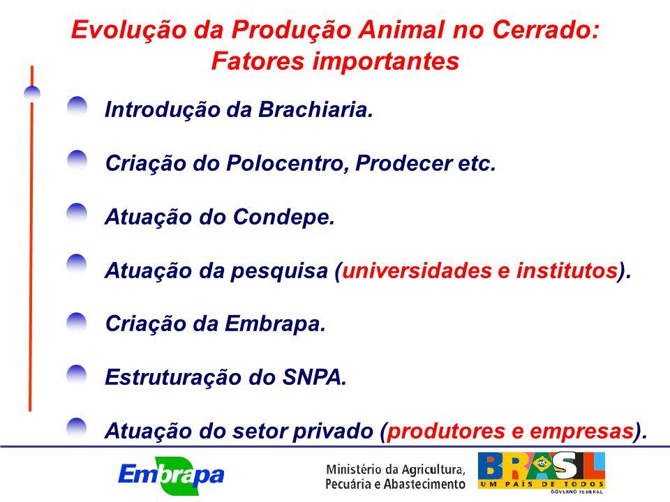 Evolução da Produção Animal no Cerrado: Fatores importantes Introdução da Brachiaria.