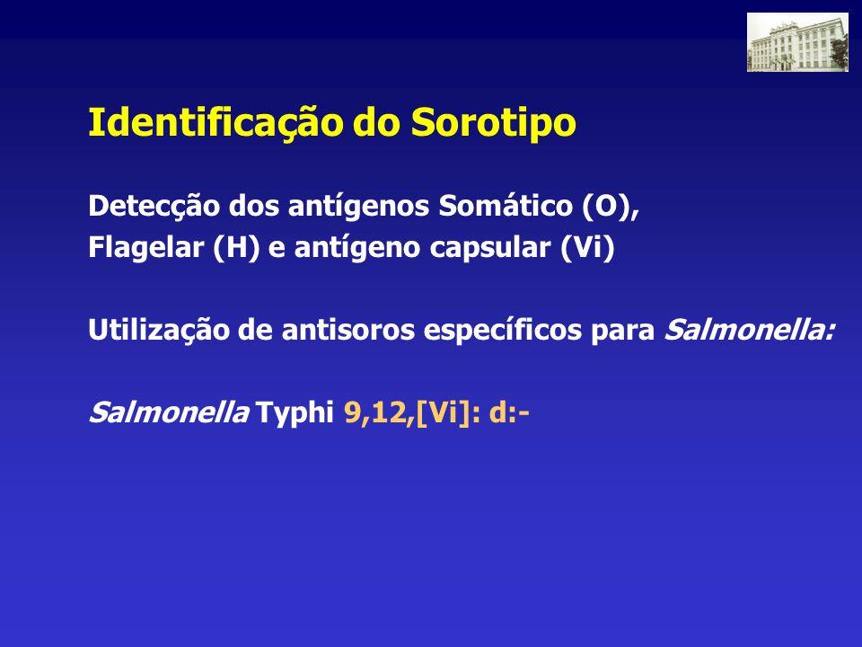 Identificação do Sorotipo Detecção dos antígenos Somático (O), Flagelar (H) e antígeno capsular (Vi) Utilização de antisoros específicos para Salmonel