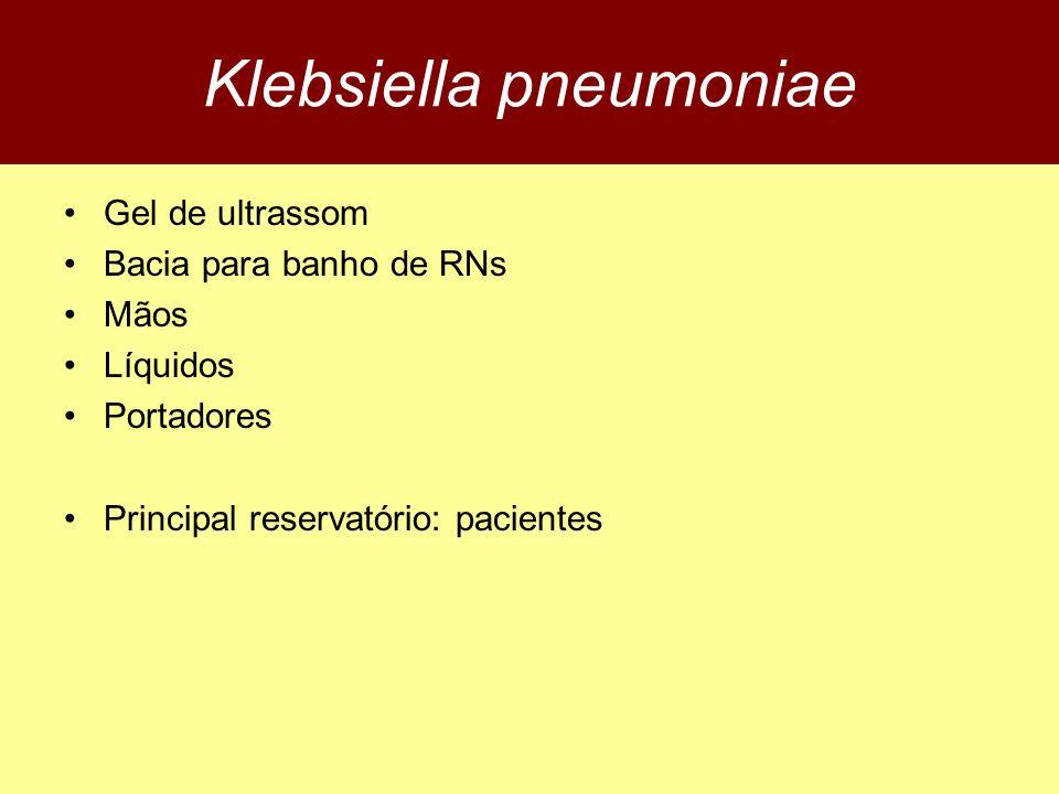 Klebsiella pneumoniae Gel de ultrassom Bacia para banho de RNs Mãos Líquidos Portadores Principal reservatório: pacientes