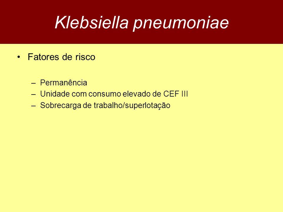 Klebsiella pneumoniae Fatores de risco –Permanência –Unidade com consumo elevado de CEF III –Sobrecarga de trabalho/superlotação