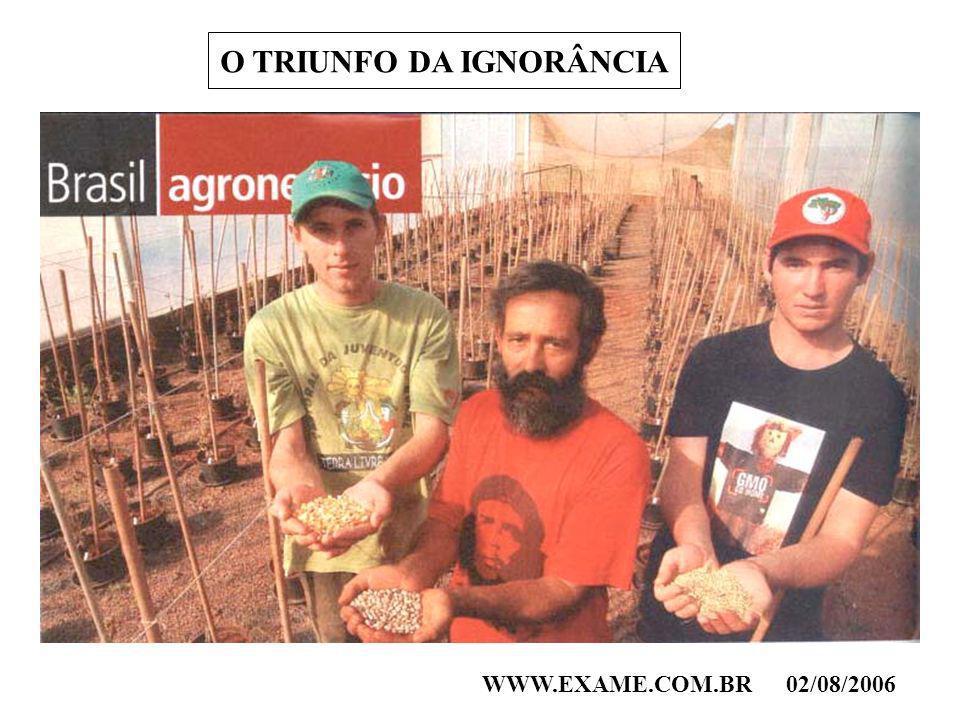 O TRIUNFO DA IGNORÂNCIA WWW.EXAME.COM.BR02/08/2006
