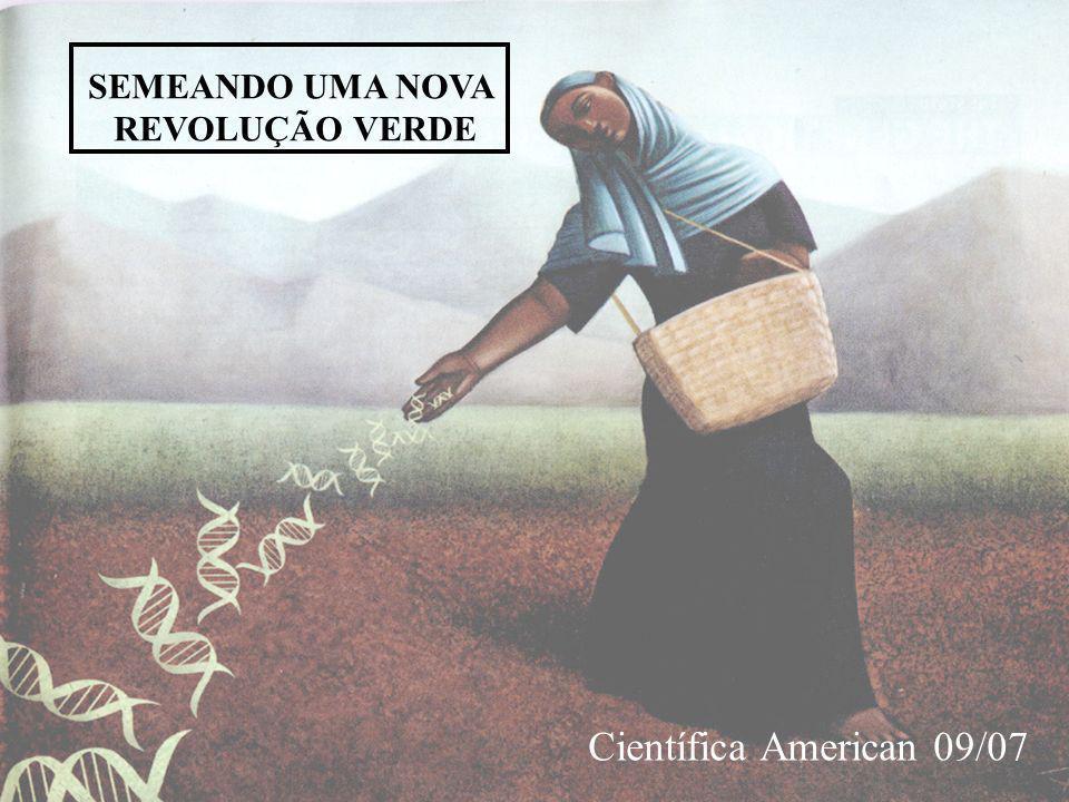Científica American 09/07 SEMEANDO UMA NOVA REVOLUÇÃO VERDE