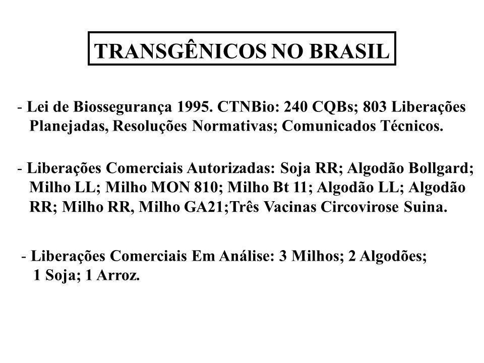 TRANSGÊNICOS NO BRASIL - Lei de Biossegurança 1995. CTNBio: 240 CQBs; 803 Liberações Planejadas, Resoluções Normativas; Comunicados Técnicos. - Libera