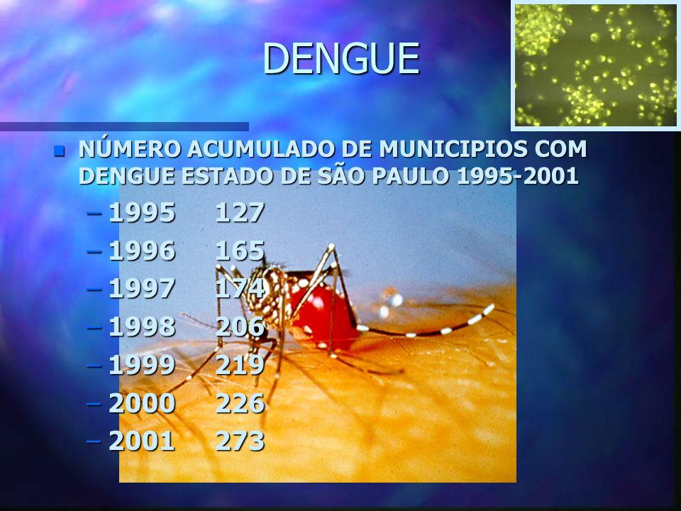DENGUE n NÚMERO ACUMULADO DE MUNICIPIOS COM DENGUE ESTADO DE SÃO PAULO 1995-2001 –1995 127 –1996 165 –1997 174 –1998 206 –1999 219 –2000 226 –2001 273