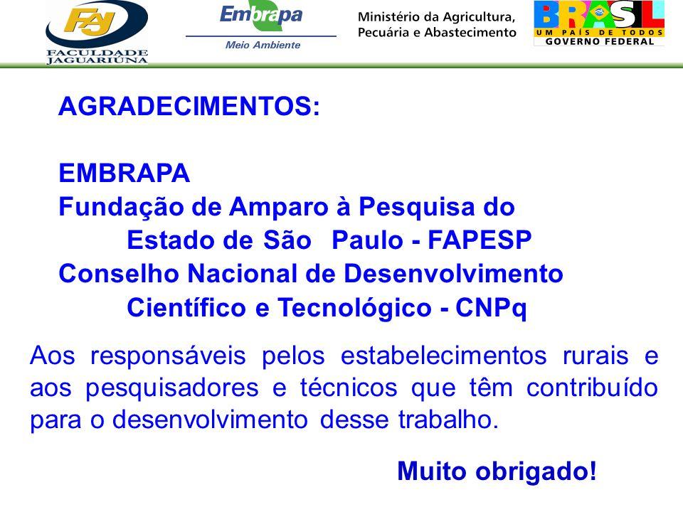 AGRADECIMENTOS: EMBRAPA Fundação de Amparo à Pesquisa do Estado de São Paulo - FAPESP Conselho Nacional de Desenvolvimento Científico e Tecnológico -