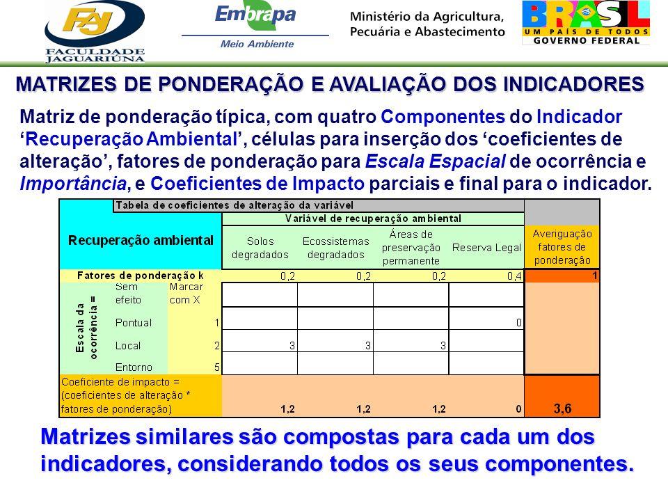 MATRIZES DE PONDERAÇÃO E AVALIAÇÃO DOS INDICADORES Matriz de ponderação típica, com quatro Componentes do IndicadorRecuperação Ambiental, células para