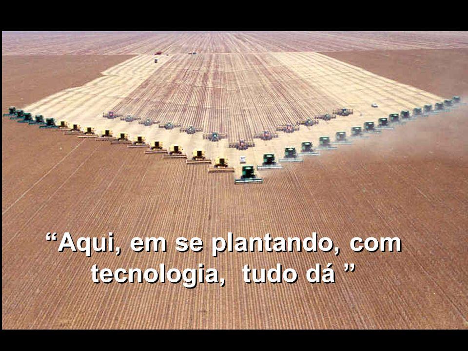 Aqui, em se plantando, com tecnologia, tudo dá Aqui, em se plantando, com tecnologia, tudo dá