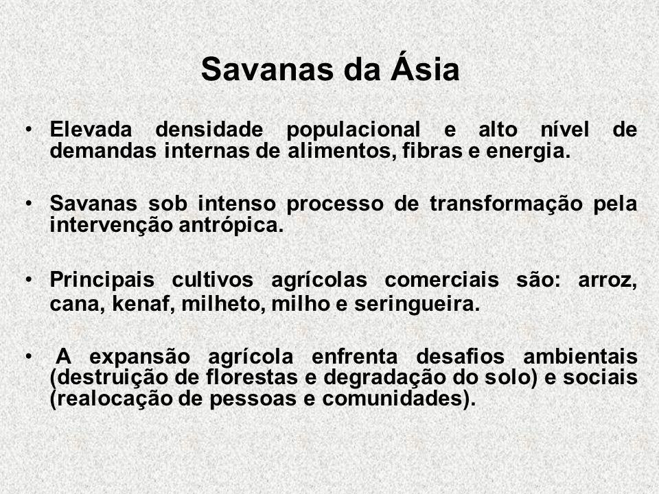 Savanas da Ásia Elevada densidade populacional e alto nível de demandas internas de alimentos, fibras e energia. Savanas sob intenso processo de trans