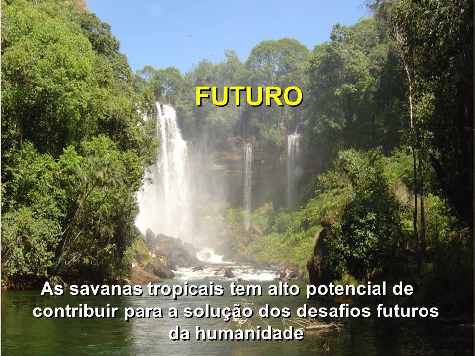 FUTURO As savanas tropicais tem alto potencial de contribuir para a solução dos desafios futuros da humanidade