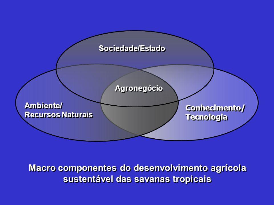 Conhecimento/ Tecnologia Conhecimento/ Tecnologia Ambiente/ Recursos Naturais Ambiente/ Recursos Naturais Sociedade/Estado Macro componentes do desenv
