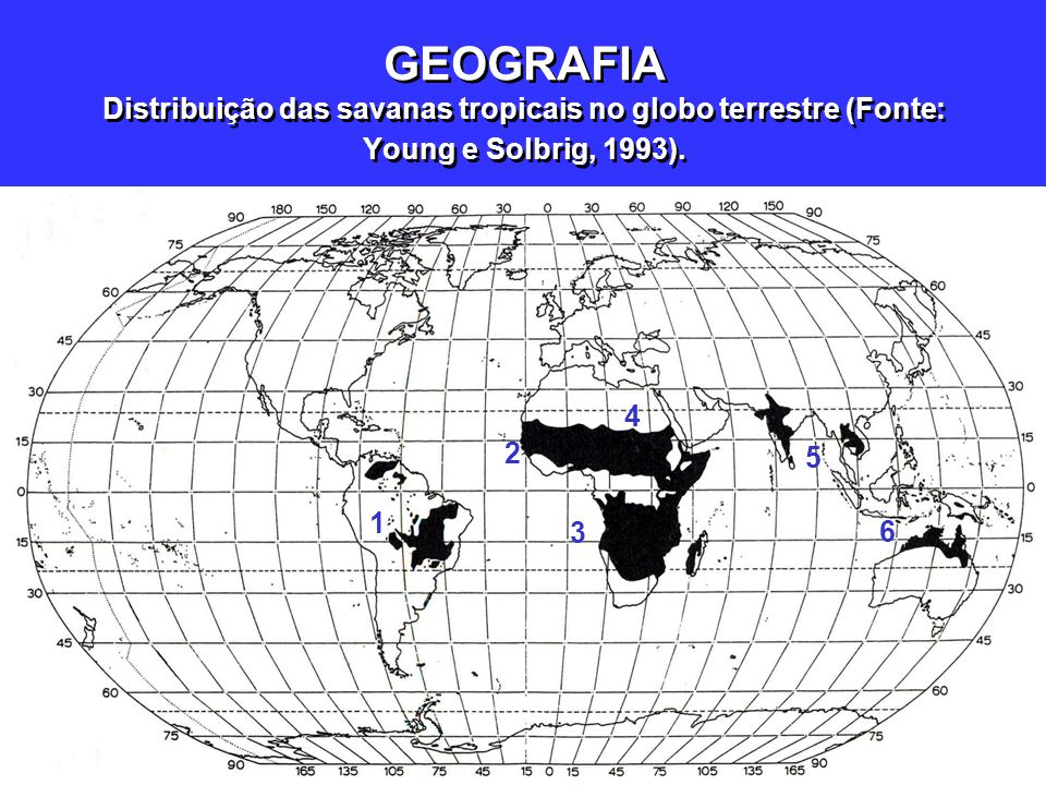 Continentes/ formações Principais paísesDenominação local Área (km 2 10 6 ) População* (%) 1.América do Sul BrasilCerrado2,46 Colômbia e VenezuelaLhanos0,6 2.África (oeste)Senegal, Guiné, Costa do Marfim, Mali, Gana, Benin, Nigéria, Camarões, Chade e África Central Savanas5,0 3.África (central/sul) Angola, R.D.