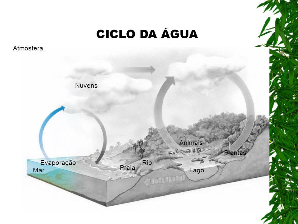 Atmosfera Nuvens Mar Praia Lago Animais Plantas RioEvaporação CICLO DA ÁGUA