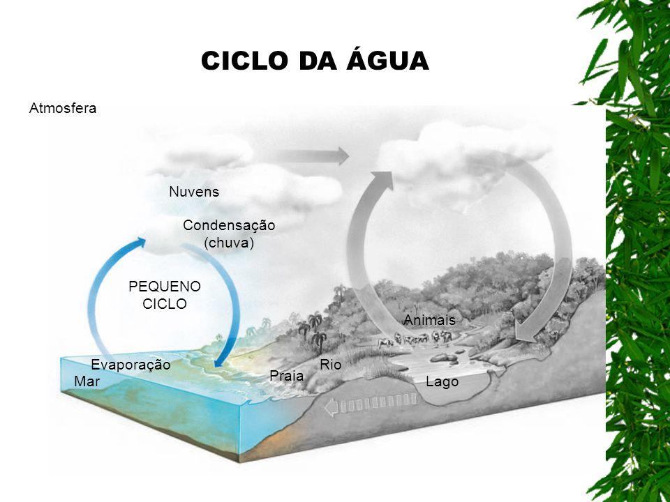 Condensação (chuva) PEQUENO CICLO Atmosfera Evaporação Mar Praia Rio Lago Animais Nuvens CICLO DA ÁGUA