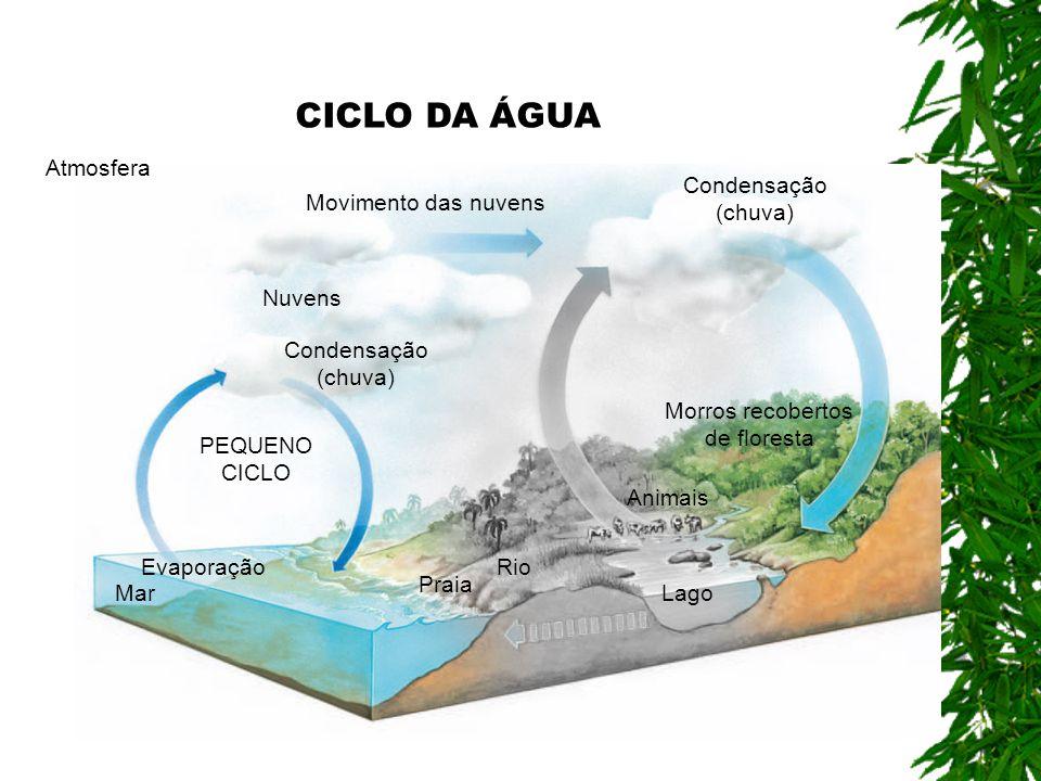 Água infiltrada no solo Atmosfera Evaporação Mar Praia Rio Lago Animais PEQUENO CICLO Condensação (chuva) Movimento das nuvens Condensação (chuva) Nuvens Morros recobertos de floresta CICLO DA ÁGUA