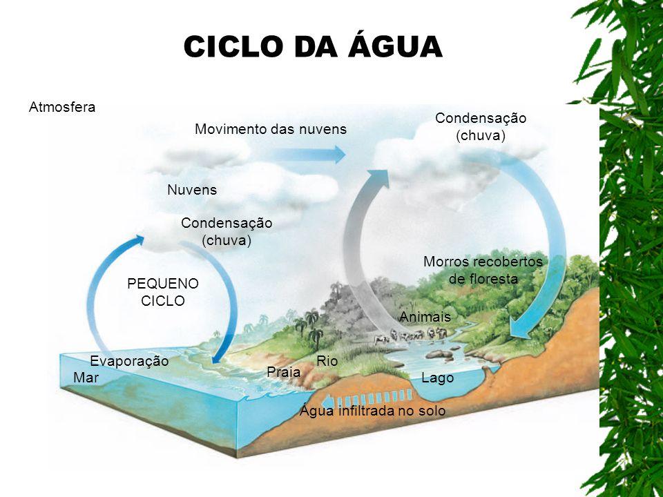 Água infiltrada no solo Atmosfera Evaporação Mar Praia Rio Lago Animais PEQUENO CICLO Condensação (chuva) Movimento das nuvens Condensação (chuva) Nuv