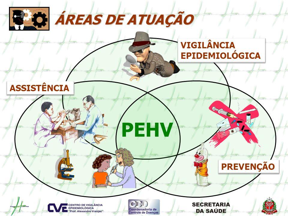 PEHV ÁREAS DE ATUAÇÃO PREVENÇÃO VIGILÂNCIA EPIDEMIOLÓGICA VIGILÂNCIA EPIDEMIOLÓGICA ASSISTÊNCIA