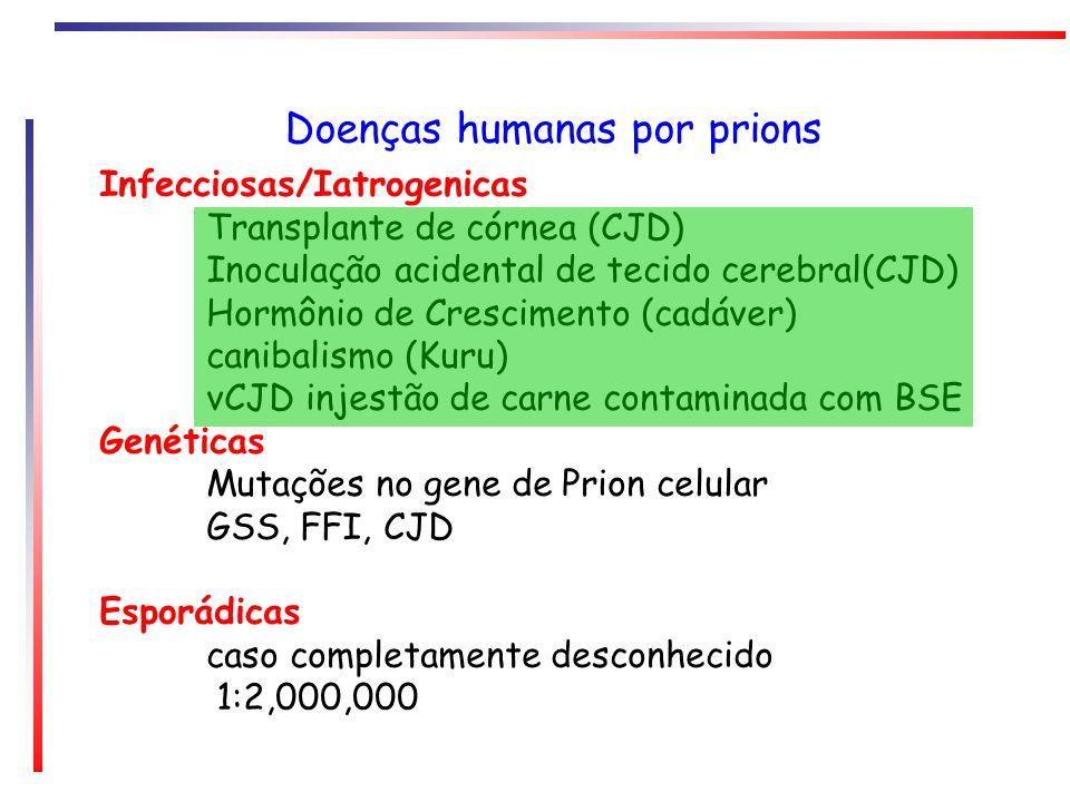 Doenças humanas por prions Infecciosas/Iatrogenicas Transplante de córnea (CJD) Inoculação acidental de tecido cerebral(CJD) Hormônio de Crescimento (