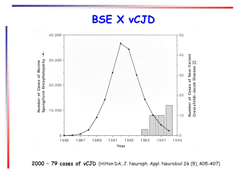 Evidências da transmissão do BSE para humanos Transmissão de BSE para macacos induziu a formação de placas floridas similares às presentes na nvCJD.