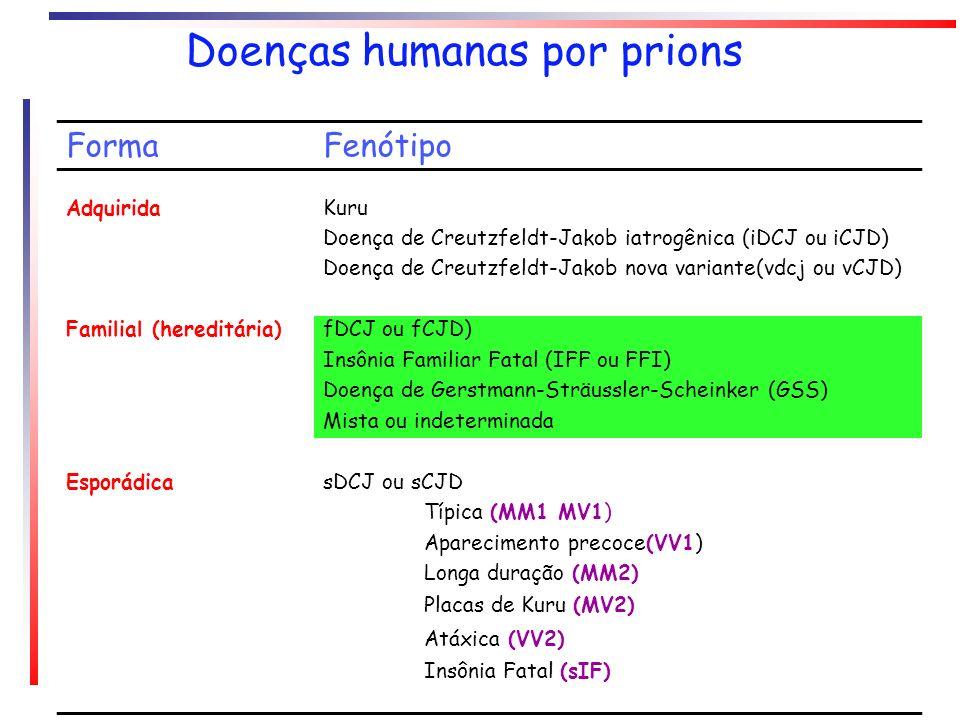 FormaFenótipo AdquiridaKuru Doença de Creutzfeldt-Jakob iatrogênica (iDCJ ou iCJD) Doença de Creutzfeldt-Jakob nova variante(vdcj ou vCJD) Familial (h