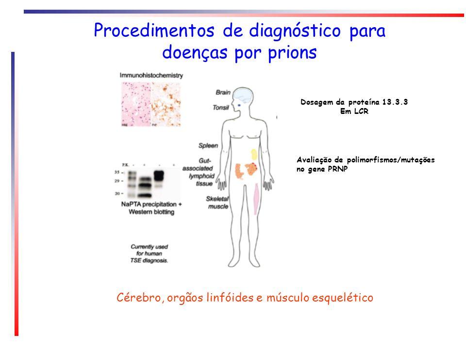 Procedimentos de diagnóstico para doenças por prions Cérebro, orgãos linfóides e músculo esquelético Dosagem da proteína 13.3.3 Em LCR Avaliação de po