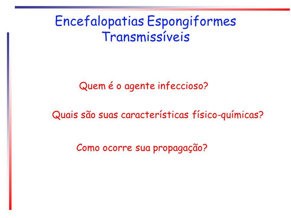 Encefalopatias Espongiformes Transmissíveis Quem é o agente infeccioso? Quais são suas características físico-químicas? Como ocorre sua propagação?