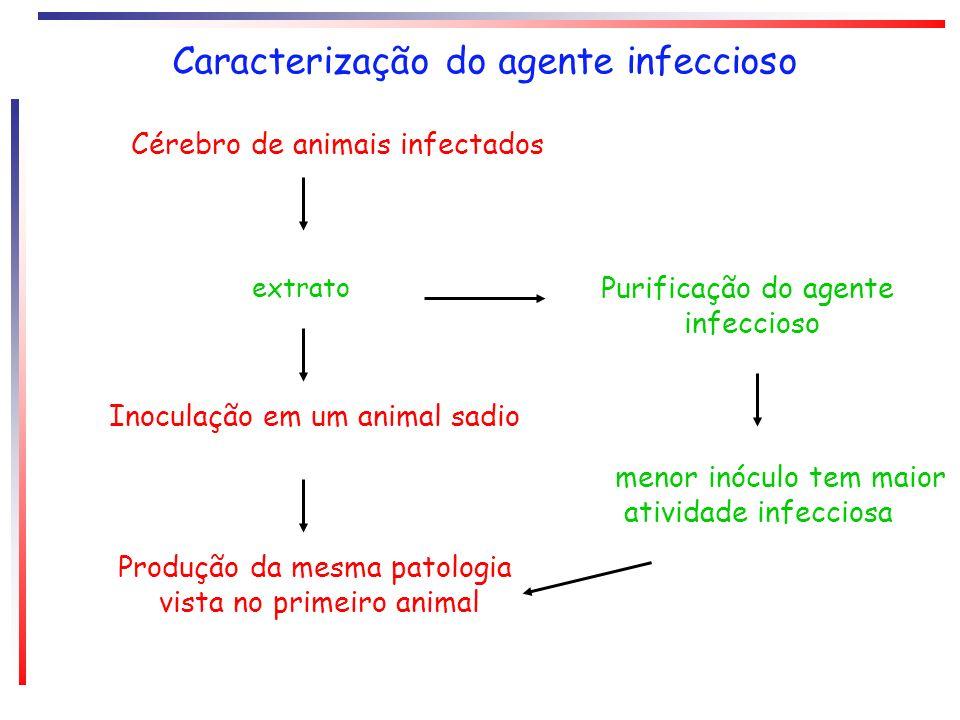 Cérebro de animais infectados extrato Inoculação em um animal sadio Produção da mesma patologia vista no primeiro animal Purificação do agente infecci