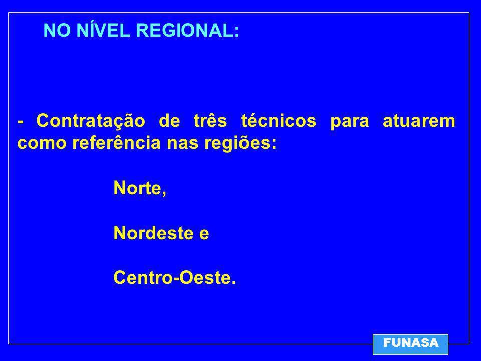 NO NÍVEL REGIONAL: - Contratação de três técnicos para atuarem como referência nas regiões: Norte, Nordeste e Centro-Oeste.