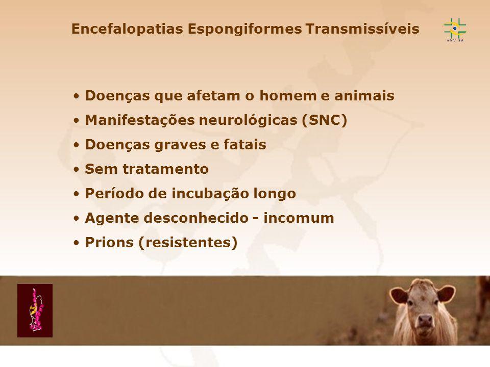 Encefalopatia Espongiforme Transmissível EET Encefalopatias Espongiformes Transmissíveis Doenças que afetam o homem e animais Manifestações neurológic