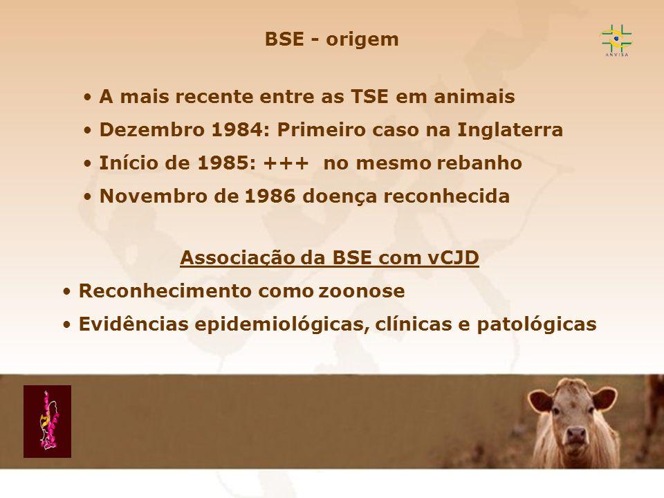 Encefalopatia Espongiforme Transmissível EET BSE - origem A mais recente entre as TSE em animais Dezembro 1984: Primeiro caso na Inglaterra Início de