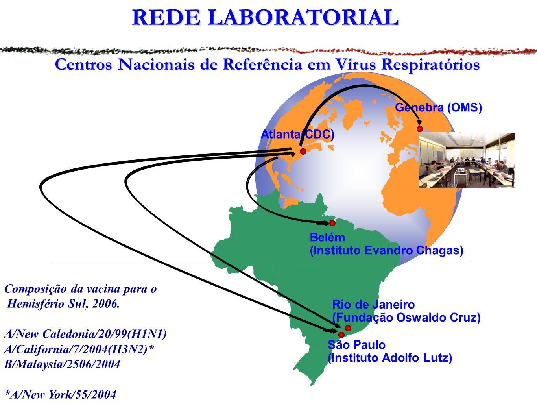 REDE LABORATORIAL Centros Nacionais de Referência em Vírus Respiratórios Atlanta(CDC) Genebra (OMS) Belém (Instituto Evandro Chagas) Rio de Janeiro (Fundação Oswaldo Cruz) São Paulo (Instituto Adolfo Lutz) Composição da vacina para o Hemisfério Sul, 2006.