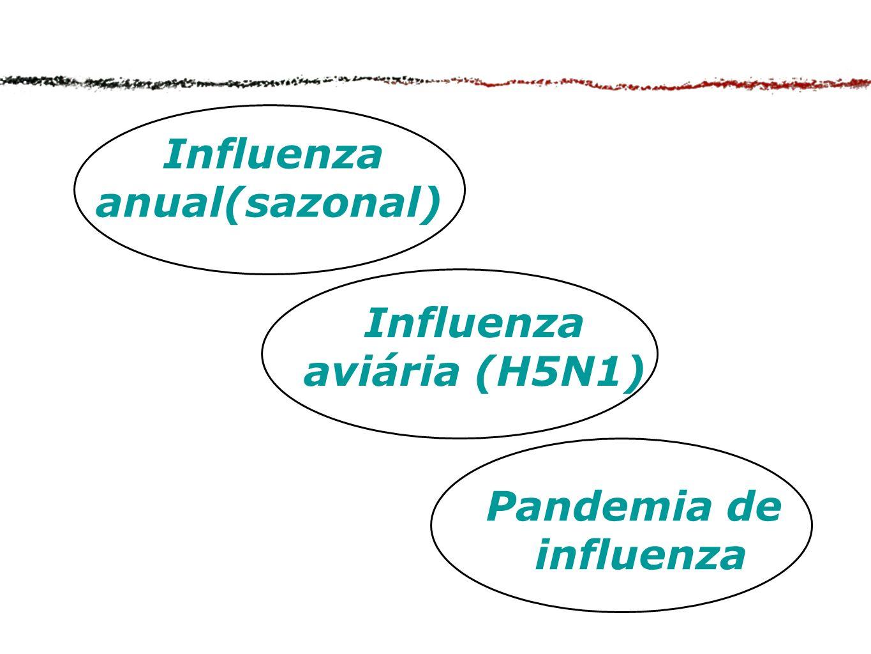 Influenza anual(sazonal) Influenza aviária (H5N1) Pandemia de influenza